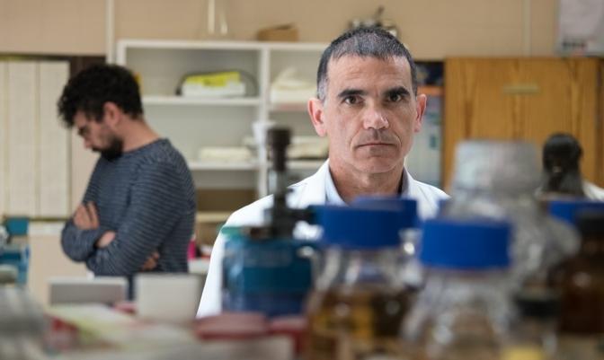 Nuevas dianas farmacológicas contra la leucemia mieloide aguda.